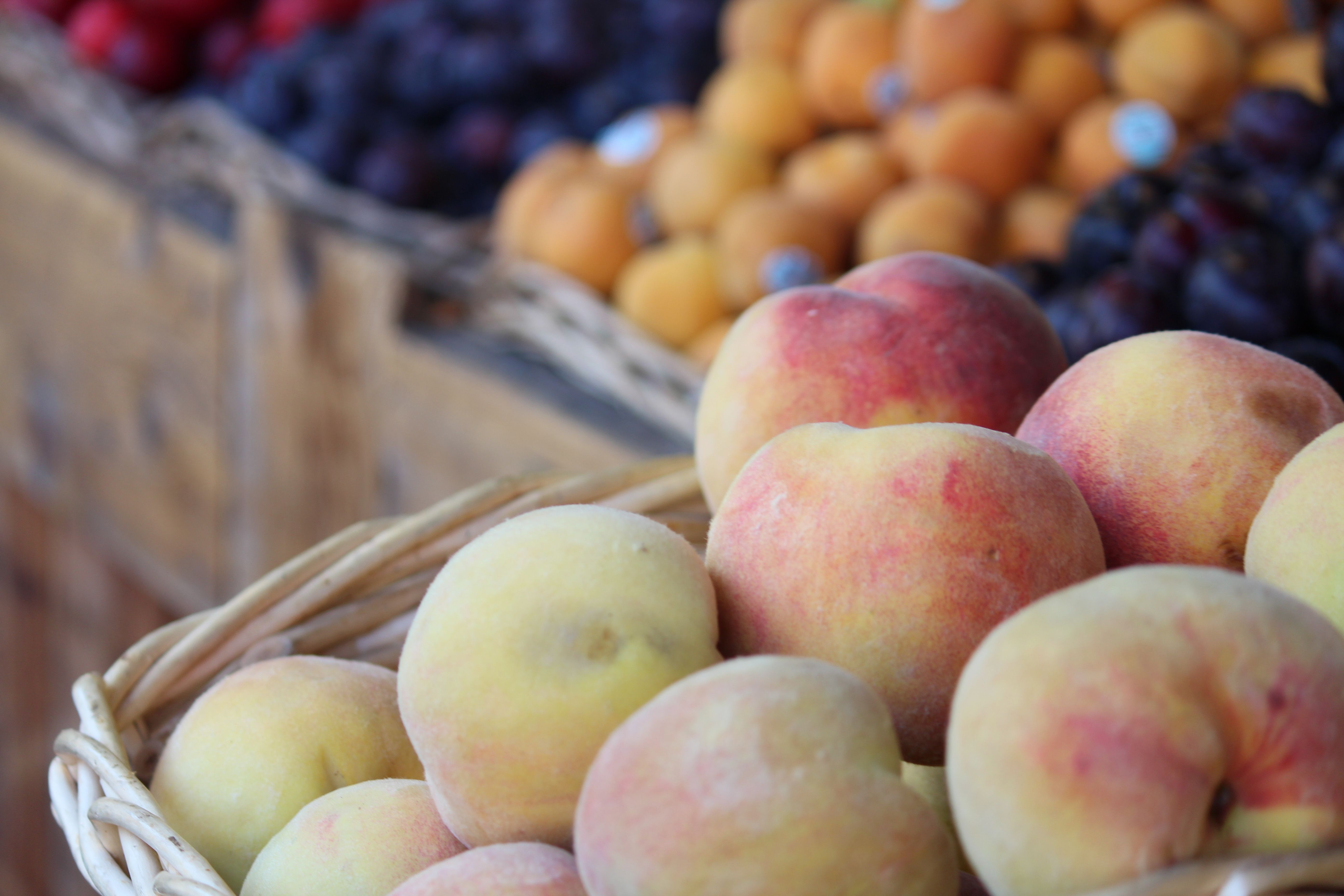 Vancouver Island fresh produce - Photo courtesy of Island Farm and Garden Magazine