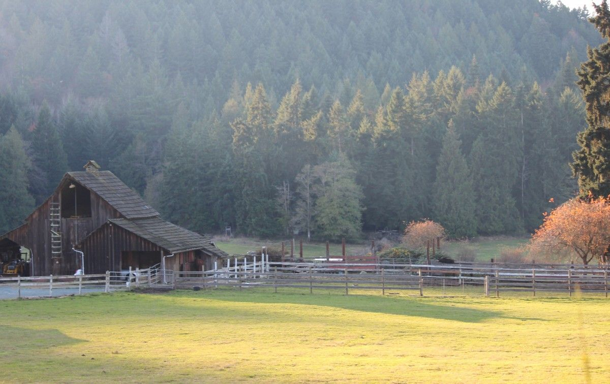 Farm Acreage For Sale Vancouver Island