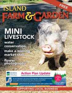Read our latest issue.